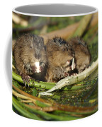 Muskrat Trio Coffee Mug