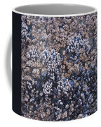 Mussels And Barnacles, Low Tide Coffee Mug