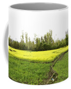 Mustard Fields In Kashmir On The Way To The Town Of Sonamarg Coffee Mug