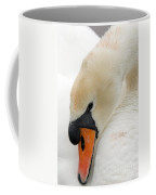 Mute Swan Fine Art Photograph Coffee Mug
