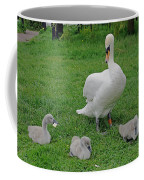 Mute Swan With Cygnets Coffee Mug