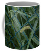 My Alcatraz Coffee Mug