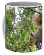 My First American Squirrel Coffee Mug