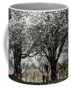 My Neighborhood In Spring Coffee Mug