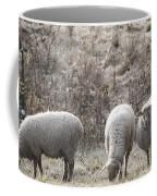 My Next Afghan Coffee Mug