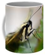 My Pet Butterlfy Coffee Mug