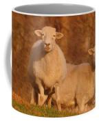My Sheep ...   Coffee Mug