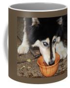 My Water Coffee Mug