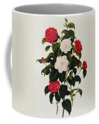 Myrtle Leaved Camellia Coffee Mug