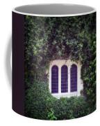 Mysterious Window Coffee Mug