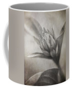 Mystic Anticipation Coffee Mug
