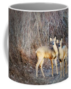 Mystic Duo Coffee Mug