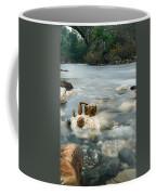 Mystic River II Coffee Mug