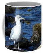 Mystic Seagull Coffee Mug