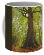 Mystical Forest Tree Coffee Mug