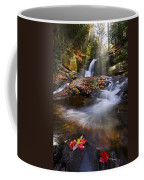 Mystical Pool Coffee Mug by Debra and Dave Vanderlaan