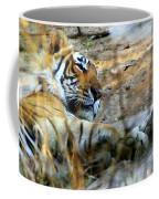 Naptime For A Bengal Tiger Coffee Mug