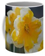 Narcissus 014-1 Coffee Mug