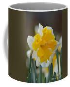 Narcissus 014-2 Coffee Mug