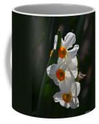 Narcissus Evening Glow Coffee Mug