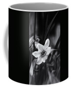 Narcissus In The Shadows Coffee Mug
