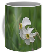 Narcissus Pair Coffee Mug