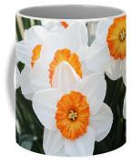 Narcissus Parkdene #2 Coffee Mug