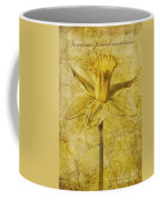Narcissus Pseudonarcissus Coffee Mug