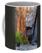 Narrow Passage Coffee Mug