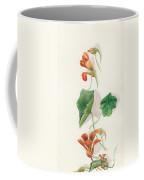 Nasturtium C1950 Coffee Mug