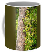 Natural Attachment Coffee Mug