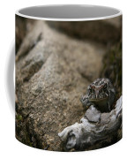 Natural Expression Of A Fowler Toad  Coffee Mug