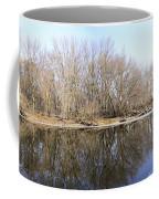 Natural Mirror Coffee Mug
