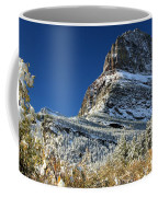 Natural Picture Frame Coffee Mug