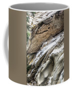 Natural Rock Art 2 Coffee Mug