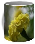 Natural Ruffles Coffee Mug
