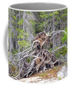 Natural Sculpture Coffee Mug