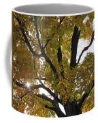 Natural Sunburst Through Autumn Tree Coffee Mug