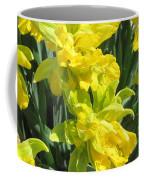 Naturalized Daffodils On The Farm Coffee Mug