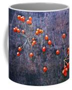 Nature Abstract 49 Coffee Mug