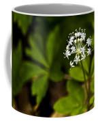 Nature Celebrates Spring With A Burst Of Botanical Fireworks Coffee Mug