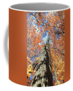 Nature In Art Coffee Mug