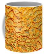 Nature Pattern Iron Oxide Mineral Sediment Crust Coffee Mug
