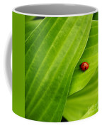 Naturellement Complementaire Coffee Mug