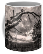 Natures Arch Coffee Mug