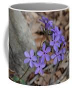 Nature's Bouquet Coffee Mug