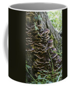 Nature's Castles Coffee Mug