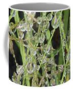 Natures Diamonds Coffee Mug