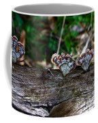 Natures Fantasy Fans Coffee Mug