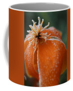Natures Frost Coffee Mug